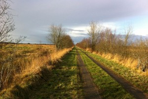Hartshoper Moor - Wirtschaftsweg